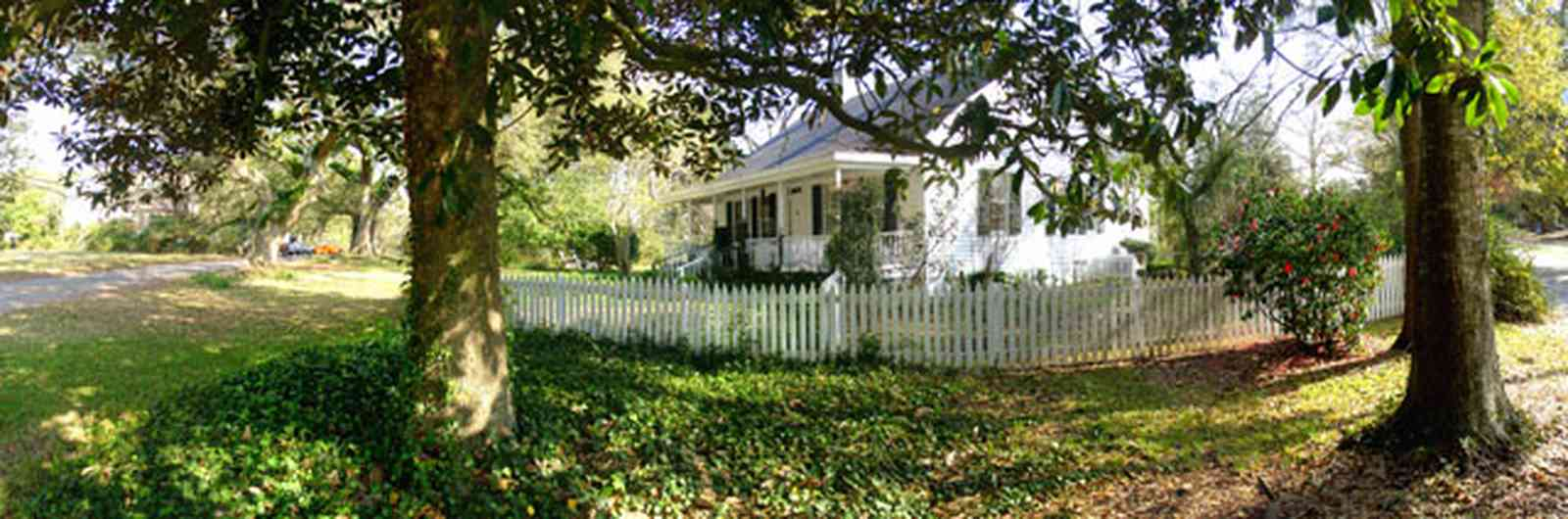 East-Hill:-1602-Moreno-Street_02.jpg:  victorian cottage, oak tree, english ivy, magnolia tree