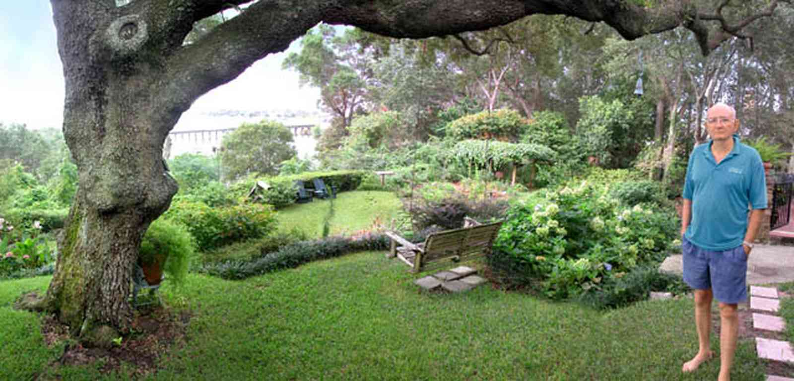 East-Hill:-1801-East-La-Rua-Street_11.jpg:  oak tree, swing, hydranga bushes, patio
