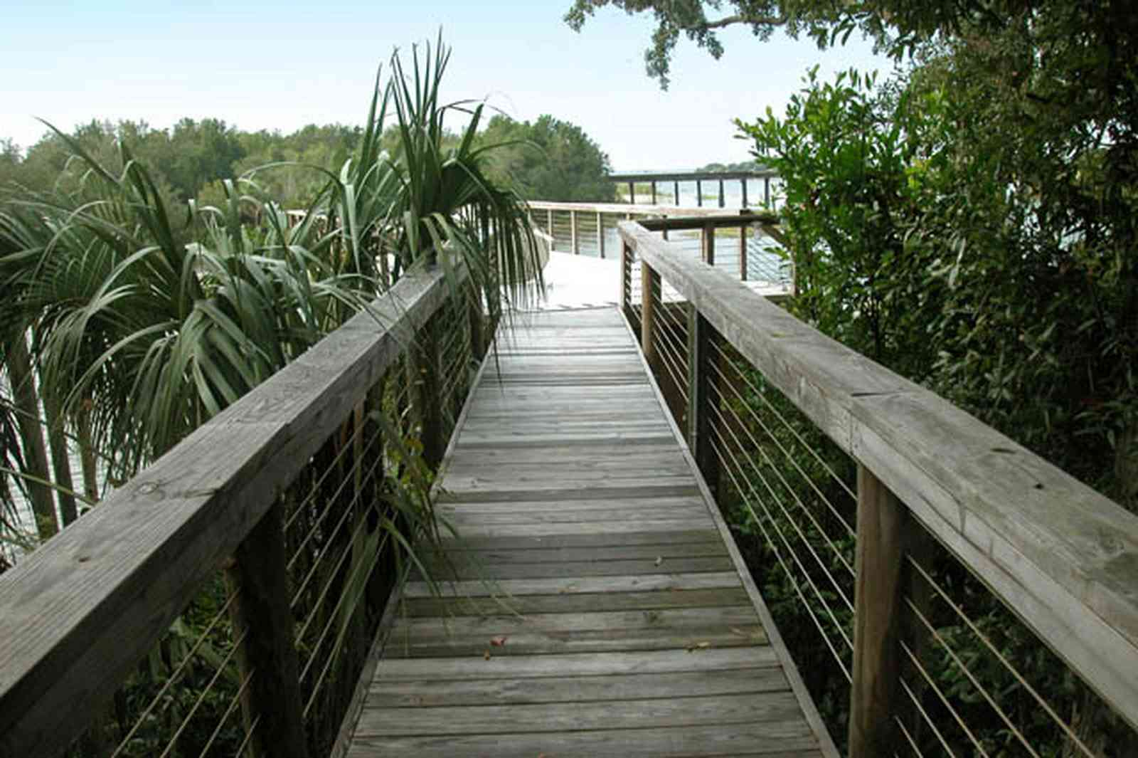 East-Hill:-1801-East-La-Rua-Street_14.jpg:  deck, pier, boat house, palmetto bush, oak tree, railroad trestle, pensacola bay, bayou texar