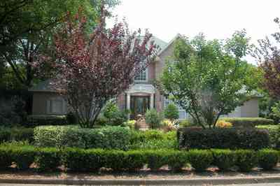East-Hill:-617-19th-Avenue_02.jpg:  box hedges, italienate architecture, pediment, columns