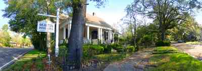 East-Hill:-McAlpin-Shop_11.jpg:  colonial home, oak tree, 9th avenue, traditional style,
