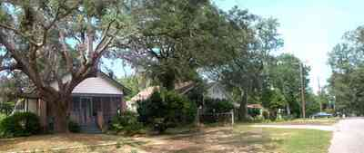 East-Pensacola-Heights:-2900-Jackson-Street_01.jpg:  craftsman cottage, oak tree, spanish moss, chain link fence, front porch