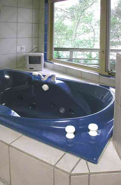 Gulf-Breeze:-92-High-Point-Drive_11.jpg:  bayview bathroom, blue bathtub, jacuzzi bathtub,