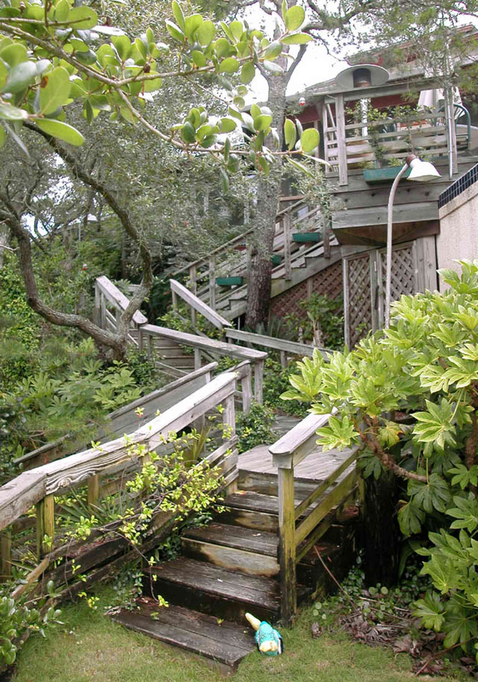 Gulf-Breeze:-92-High-Point-Drive_Dr_16.jpg:  deck, wooden staircase, tropical forest, tree house, bay tree, wooden steps