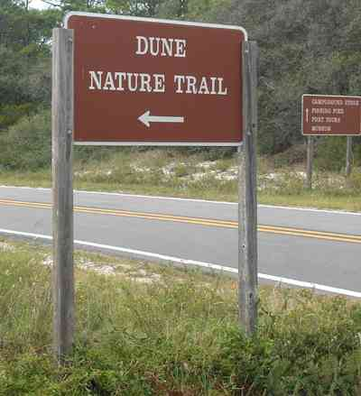 Gulf-Islands-National-Seashore:-Dunes-Nature-Trail_01.jpg:  dunes, barrier island, two-lane road, national park service, sea oats, gulf of mexico