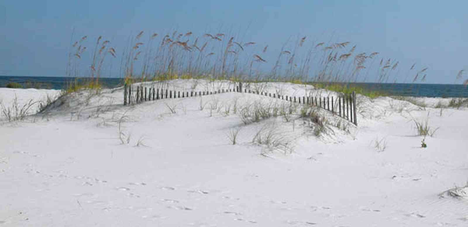 Gulf-Islands-National-Seashore:-Langdon-Beach_11.jpg:  dunes, dune fences, sea oats, quart sand, surf, gulf of mexico