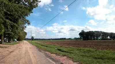 Hollandtown:-Holland-Farm:-South-Field_03.jpg:  country road, dirt road, tilled field, crop, pumpkin patch. oak trees, sweet gun tree, telephone line