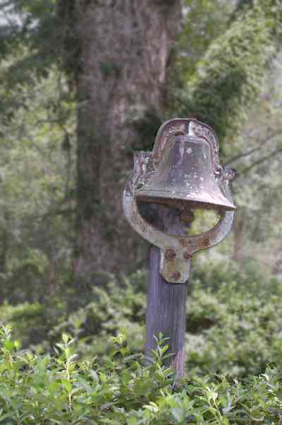 Jay:-Market-Road-Farm_03.jpg:  plantation bell, bell, pecan tree, farm, farmland, farm house, santa rosa country