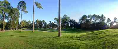 Marcus-Point:-Golf-Club_05.jpg:  green, fairway, golf course, short leaf pine trees