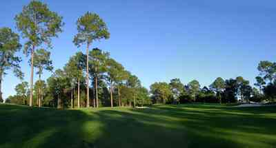 Marcus-Point:-Golf-Club_06.jpg:  fairway, green, golf, short leaf pine trees