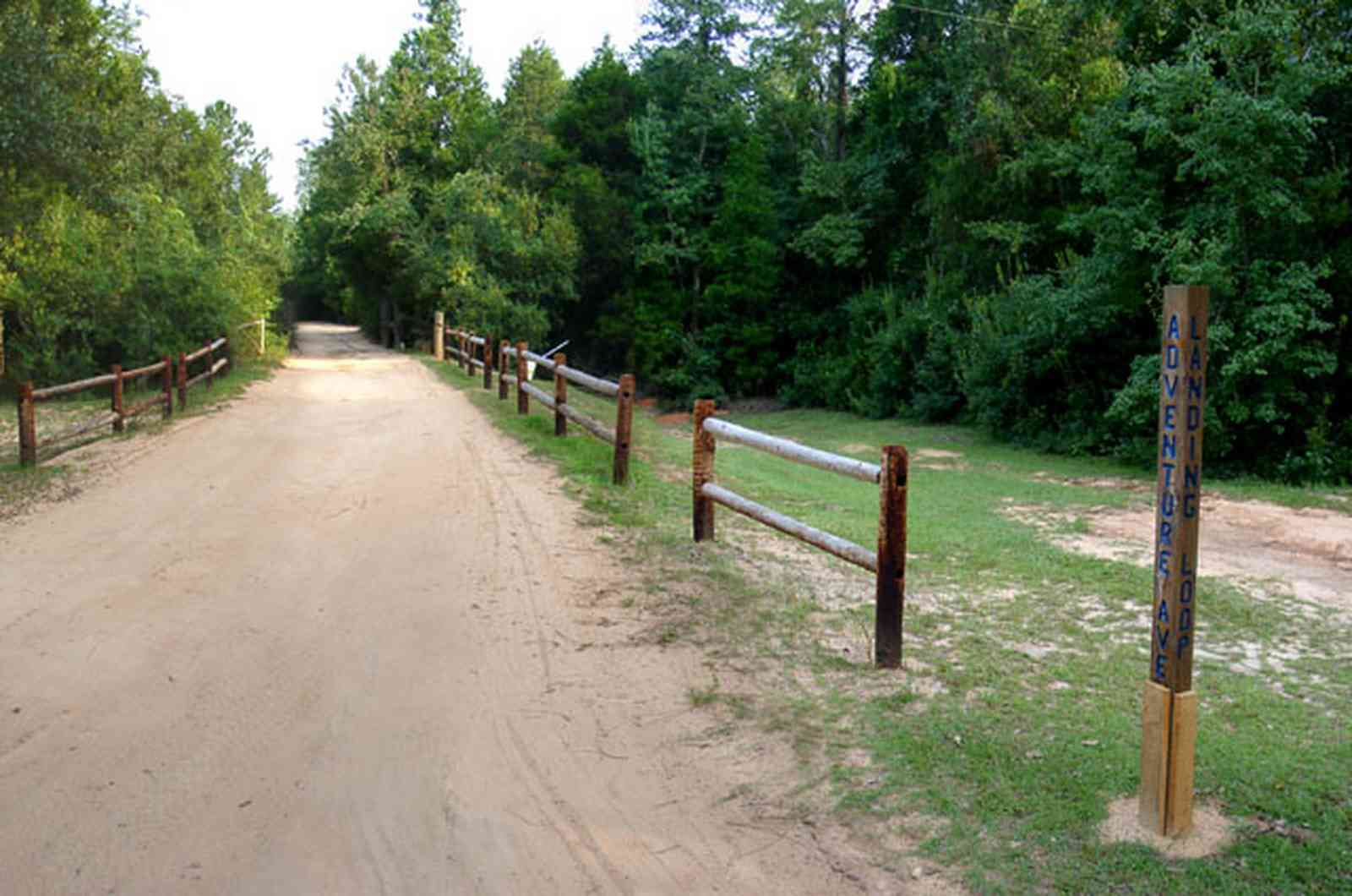 Milton:-Adventures-Unlimited_08.jpg:  dirt road, wooden fence, forest, park, camp, swamp