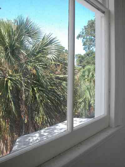 North-Hill:-200-West-Jackson-Street_34.jpg:  palm tree, casement window, upstairs, victorian home