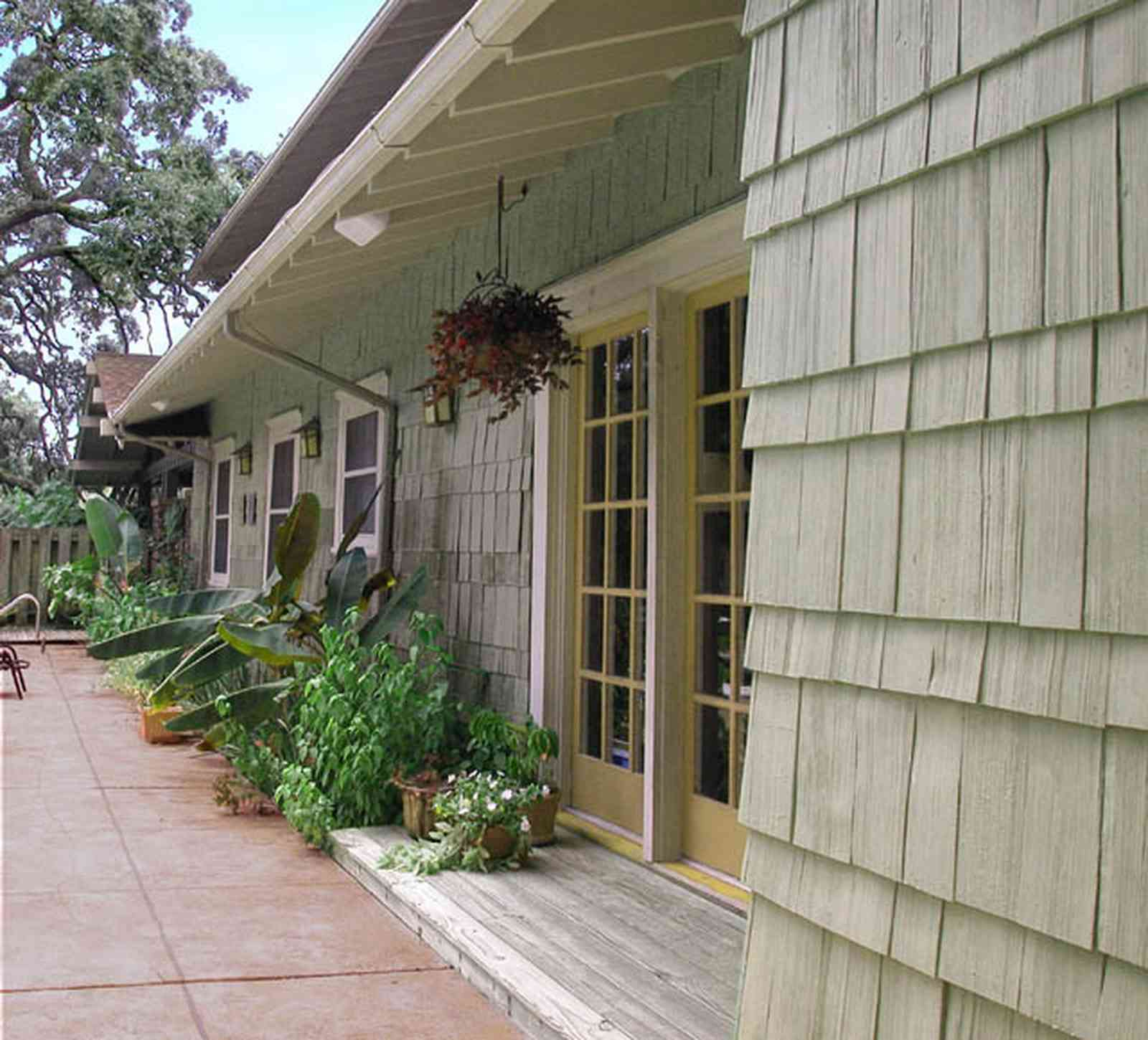 North-Hill:-284-West-Gonzales-Street_25.jpg:  shingle siding, hanging baskets, impatiens, pation door, craftsman cottage, oak tree