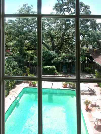 North-Hill:-284-West-Gonzales-Street_27a.jpg:  swimming pool, oak tree, upstairs apartment, craftsman cottage