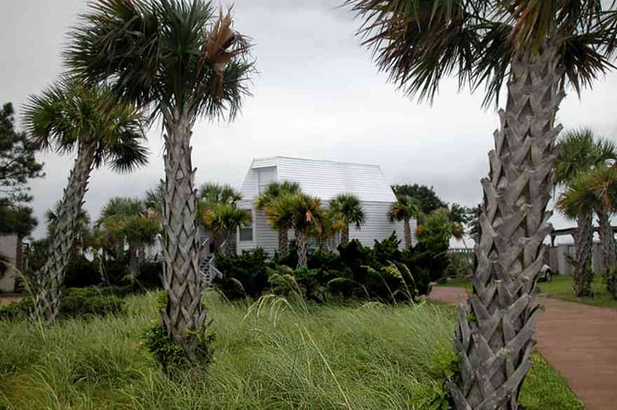 Pensacola-Beach:-225-Sabine-Drive_01.jpg:  palm trees, sea oats, driveway, beach house, escambia county, sabine bay,