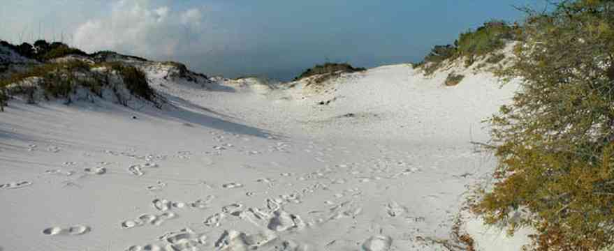 Pensacola-Beach:-Dunes_02.jpg:  santa rosa island, gulf of mexico, gulf islands national seashore, escambia county, cumulus clouds, beach, sand dunes, emerald coastsanta rosa island, gulf of mexico, gulf islands national seashore, escambia county, cumulus clouds, beach, sand dunes, emerald coast