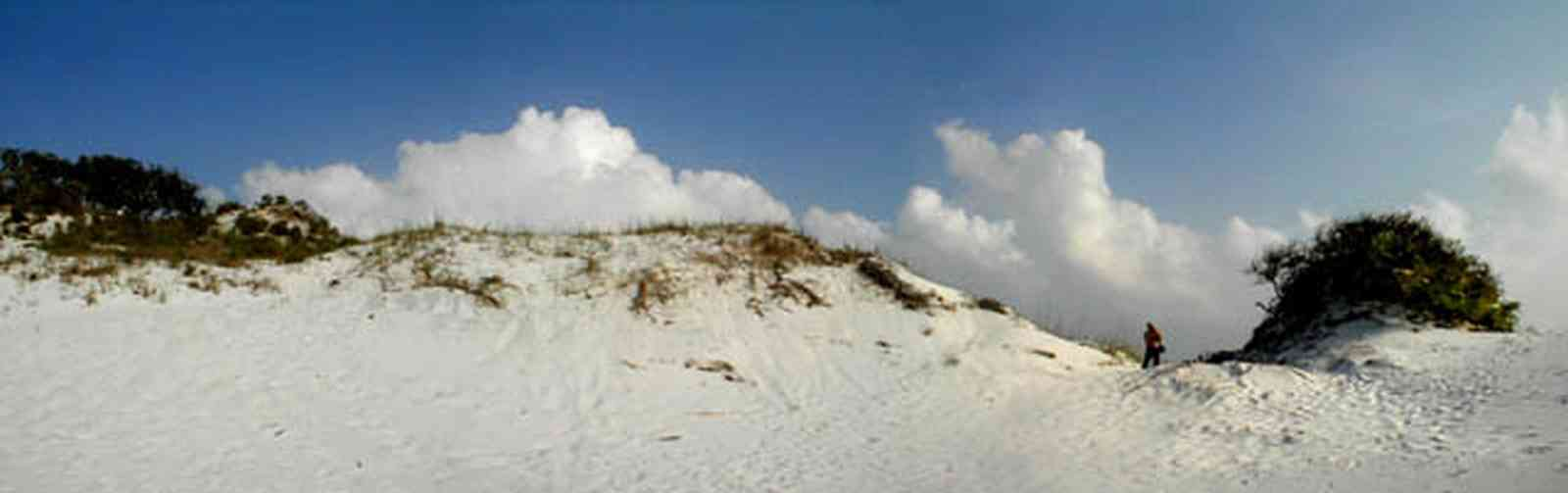Pensacola-Beach:-Dunes_05.jpg:  santa rosa island, gulf of mexico, gulf islands national seashore, escambia county, cumulus clouds, beach, sand dunes, emerald coast