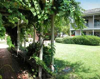 Pensacola:-Historic-Pensacola-Village:-Tivioli-House_01c.jpg:  arbor, grape vine, historic village, historic house, balcony, museum shop, museum, brick sidewalk