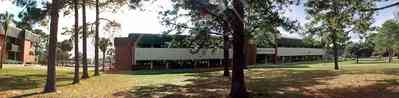 Pensacola:-Pensacola-Junior-College_04.jpg:  campus building, pine tree, college student