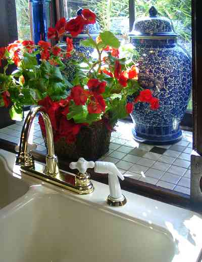 Pensacola:-Seville-Historic-District:-433-East-Zaragoza-Street_35.jpg:  ginger jar, blue willow china,sink, faucet, geramium