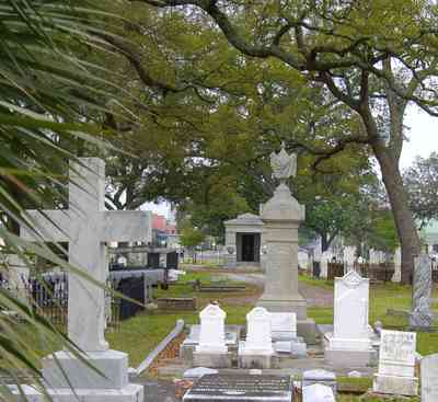 Pensacola:-Seville-Historic-District:-St-Michael-Cemetery_09.jpg:  cross, crypt, tomb, cemetery, oak tree