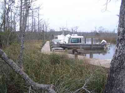 Pensacola:-Swamp-House_12.jpg:  boat, shore, swamp, pine trees,