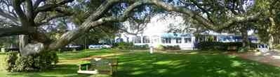 Sanders-Beach:-Pensacola-Yacht-Club_03.jpg:  oak tree, awning, swing