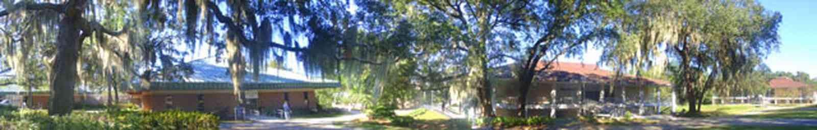 University-Of-West-Florida:-Campus_09.jpg:  classroom buildings, university, campus, students, spanish moss