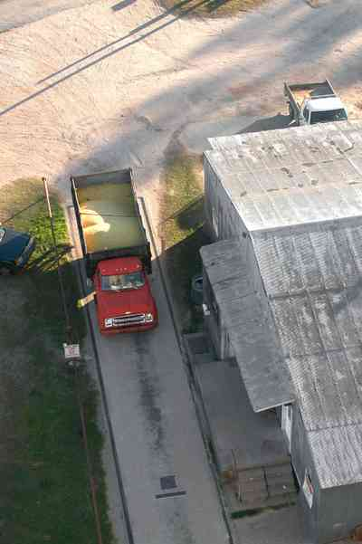 Walnut-Hill:-Escambia-Grain-Corp_06.jpg:  grain elevator, wheat, corn, soy beans, tower, loading dock, farmers, weigh-in, chevy truck, seed, fertilizer