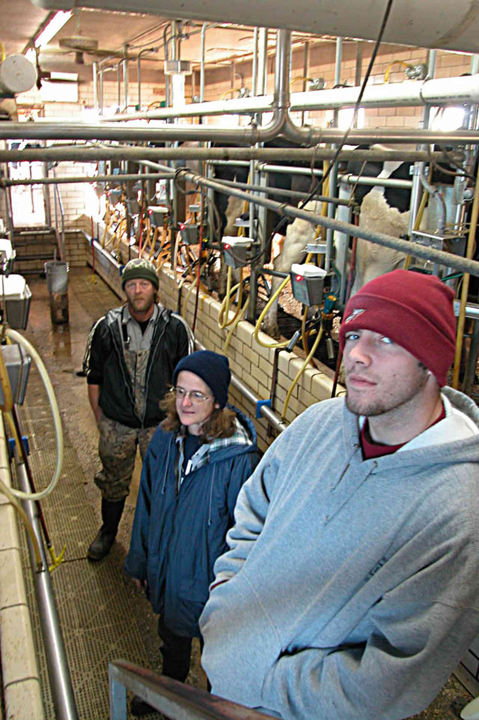Walnut-Hill:-VanPelt-Farm_10.jpg:  dairy farm, heifer barn, milking barn, corral, fence, farmer, holstein cows, milking machines, farmland