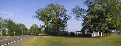 Walnut-Hill:-Ward-Farm_01.jpg:  farmland, craftsman style home, oak tree, magnolia tree, highway 97, corn field, menonite religious community, two-lane road, curving road, escambia county