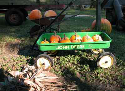 Whitfield-Community:-Whitfield-Farm-Giant-Pumpkin-Patch_04.jpg:  pumpkins, mailbox, picket fence, curbside sales, farmer, wagon, wheelbarrow, farming